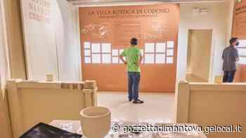 Sezione archeologica del Mast di Castel Goffredo: oggi l'inaugurazione del nuovo percorso - La Gazzetta di Mantova