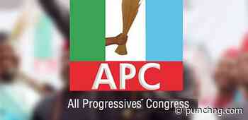 Jigawa APC overturns Rep's suspension - Punch Newspapers