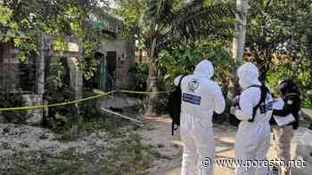 Tras operativo, aseguran 34 paquetes con distintas drogas en Felipe Carrillo Puerto - PorEsto