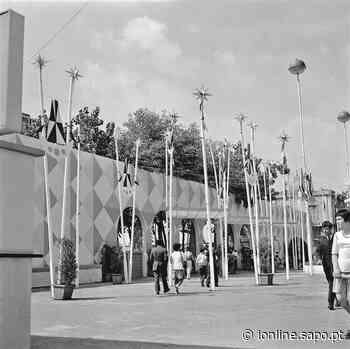 1 de junho de 1955. Bezerros na grelha e a sede do elegante embaixador alemão - Jornal i