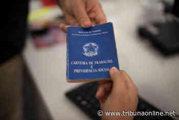 Em Taquaritinga (SP): Frente de Trabalho recebe 840 inscrições - Tribuna On Line