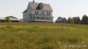Neill Farm development in Fredericton gets go-ahead - CBC.ca