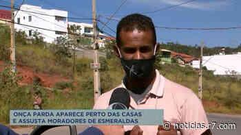 Moradores temem onça em bairro de Esmeraldas - HORA 7
