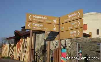 Kazan zoo resumes struggle for elephants, rhinos and five-metre giraffes - Realnoe vremya