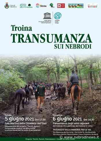 A Troina si ripete l'antica pratica della transumanza - Nebrodi News