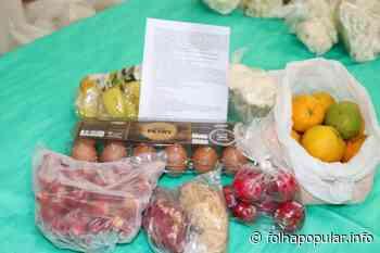 Kits de agricultura familiar serão distribuídos em Arroio do Meio - Folha Popular