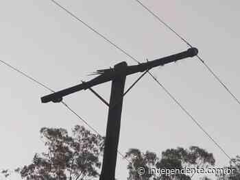 Moradores da Cascalheira, em Arroio do Meio, pedem substituição de cruzeta em poste de energia - independente