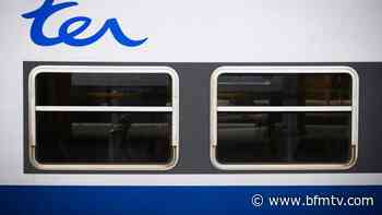 La circulation des trains entre Dunkerque et Hazebrouck a repris après un feu de talus - BFMTV