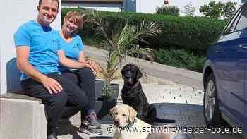 Schimmel-Spürhunde in Hechingen - Hunde schnüffeln, was Menschen nicht sehen - Schwarzwälder Bote