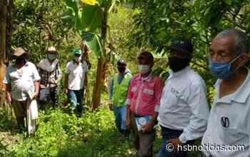 Boyacá: Pequeños productores agrícolas de Berbeo, se capacitan para fortalecer cultivos - HSB Noticias