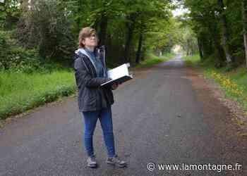 Aliénor Daubigney conseille les propriétaires forestiers à Thiers Dore et Montagne (Puy-de-Dôme) - La Montagne