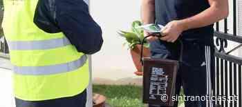 SMAS promovem recolha seletiva de resíduos alimentares no Bairro Económico de Queluz - Sintra Notícias - Sintra Notícias
