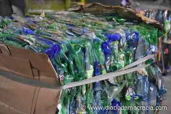 Planta de Reciclaje: se realizó una carga de 10.000 kilos - Diario Democracia