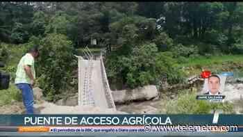 Puente colapsa en Tierras Altas, Chiriquí - Telemetro