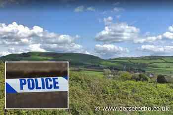 Handbag stolen from vehicle parked in Langdon Woods - Dorset Echo