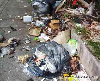Basura, moscas y malos olores en Tocumen y otros sectores - Crítica Panamá