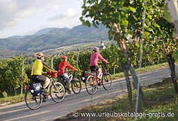 Rad- & E-Bike-Urlaub am Fuße des Schwarzwaldes   Bad Krozingen, Schwarzwald - Urlaubskataloge-gratis