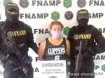 Cae integrante de la Pandilla 18 mientras cobraba extorsión en El Pedregal - ElHeraldo.hn