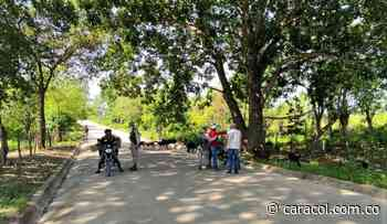 Disparos en Chalán serían con armas de largo alcance: alcaldesa - Caracol Radio