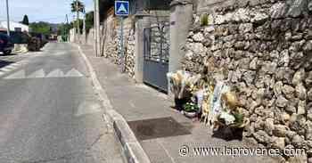 Vidéo - Drame à Allauch : une marche blanche en hommage à Rafael - La Provence