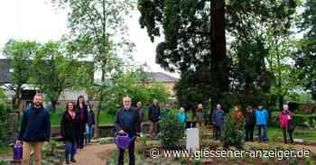 Friedhof in Großen-Buseck: Memoriam-Garten freigegeben - Gießener Anzeiger