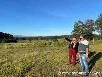 Prefeitura Taquara divulga local da instalação do primeiro horto municipal - Jornal NH