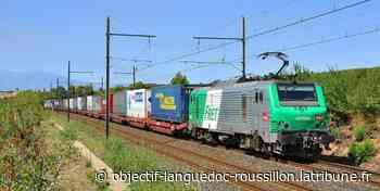 Train des primeurs Perpignan-Rungis : la CGT manifeste, Matignon... - Objectif Languedoc Roussillon