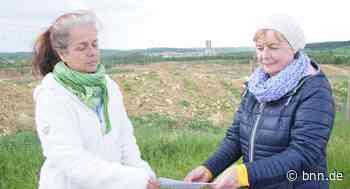 Umweltschützer sind gegen Erweiterungspläne des Zementwerks in Walzbachtal-Wössingen - BNN - Badische Neueste Nachrichten