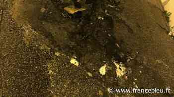 Des feux de poubelles excèdent des habitants d'un quartier de Tourlaville - France Bleu