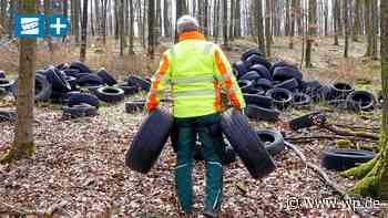 Bestwig: Konkrete Hinweise nach Fund von 400 Reifen im Wald - WP News