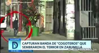 """Zarumilla: PNP captura a banda de """"cogoteros"""" - Diario Correo"""