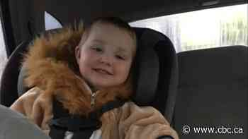 Parents of missing Truro toddler settle part of cyberbullying case - CBC.ca