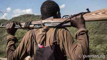 Bandits kill police officer, 10 others in Kaduna, Katsina - Guardian