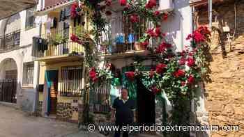 Un rosal de 14 metros - El Periódico de Extremadura