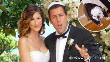 Adam Sandler's Dog Was Best Man At His Wedding - LADbible