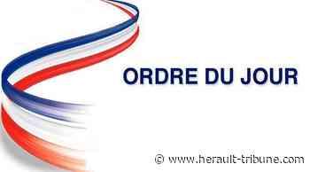 Marseillan : ordre du jour du conseil municipal du 07 juin - Hérault-Tribune