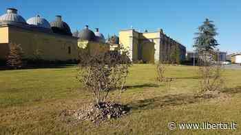 Castel San Giovanni, accanto al cimitero un giardino per le vittime del Covid - Libertà Piacenza - Libertà