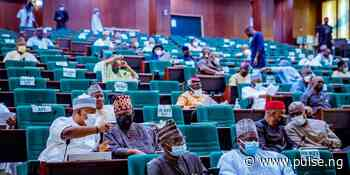 House of Reps receives proposal to split Adamawa into 3 states - Pulse Nigeria