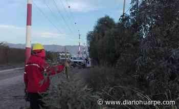 Intervienen la arboleda de calles 5, 6 y 7 - Diario Huarpe