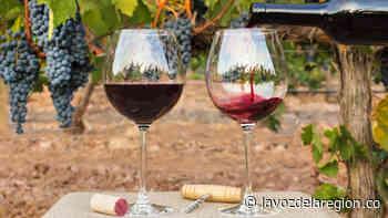 Productores de vino de la Ulloa dan primer paso hacia la formalización - Huila