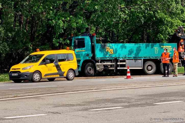 Vrachtwagen rijdt in op bestelwagen AWV aan E314 in Genk