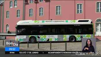 Cascais. Autarquia investe um milhão de euros em dois autocarros a hidrogénio verde - RTP