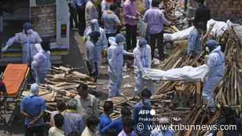 New Delhi akan Longgarkan Pembatasan Sosial Mulai Minggu Depan Jika Kasus COVID-19 Terus Menurun - Tribunnews.com