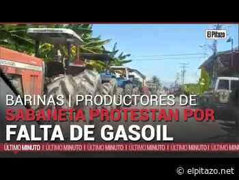 Barinas| Productores de Sabaneta protestan por falta de gasoil - El Pitazo