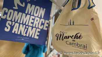Un nouveau sac « made in Cambrai » pour faire ses courses au marché - La Voix du Nord
