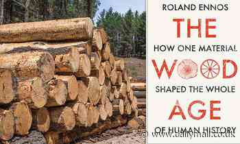Remembering the wood old days! Author says we need 'small-scale circular economies'