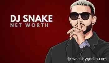 DJ Snake's Net Worth (Updated June 2021) - Wealthy Gorilla