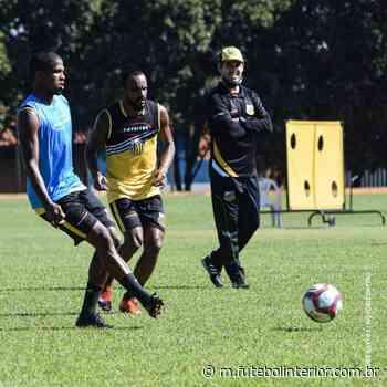Focado nos 100%, Novorizontino faz último treino e viaja rumo a Itu - Futebol Interior - Futebolinterior