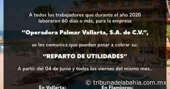 Noticia anterior Reparto de utilidades Operadora Palmar Vallarta - Noticias en Puerto Vallarta - Tribuna de la Bahía