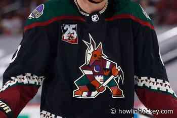 Arizona Coyotes Should Envy Toronto Maple Leafs Situation - Howlin' Hockey